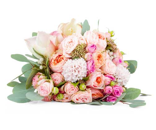 Bouquet of beautiful flowers on white